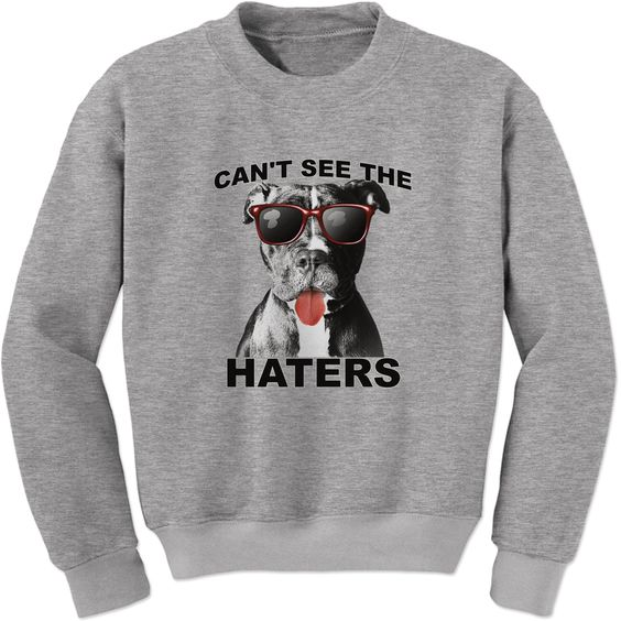 Can't See The Haters Sweatshirt AI01