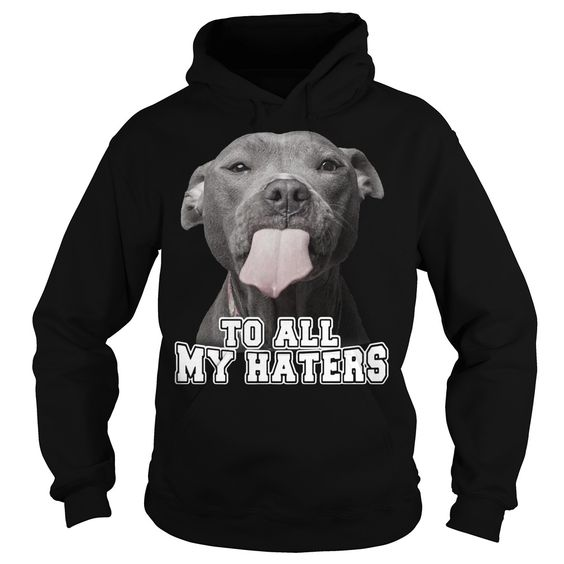 to all my haters Hoodie AI01